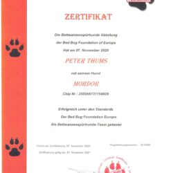 Zertifikat Mordor neu (1)